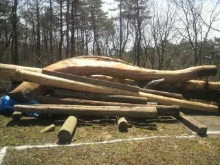 四間の杉材